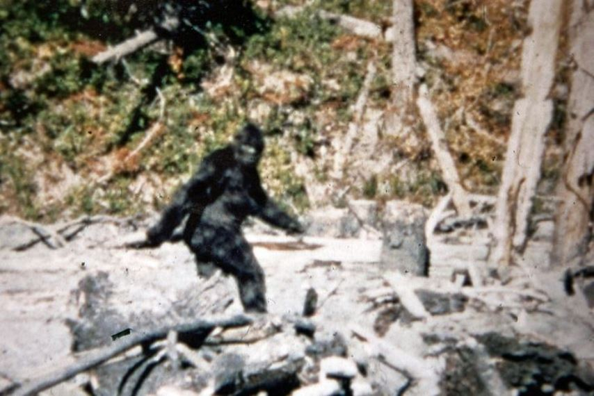 a history of big foot yeti and sasquatch Bigfoot is a legend/folks tale all around the world from big foot, the abominable snowman, yeti, and sasquatch, all have been old wise tale stories from all over for thosands of years.